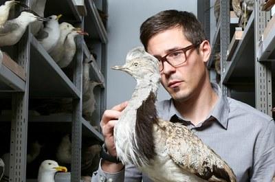 Das Beobachten von Vögeln hat Schweizer schon als Kind für sich entdeckt.