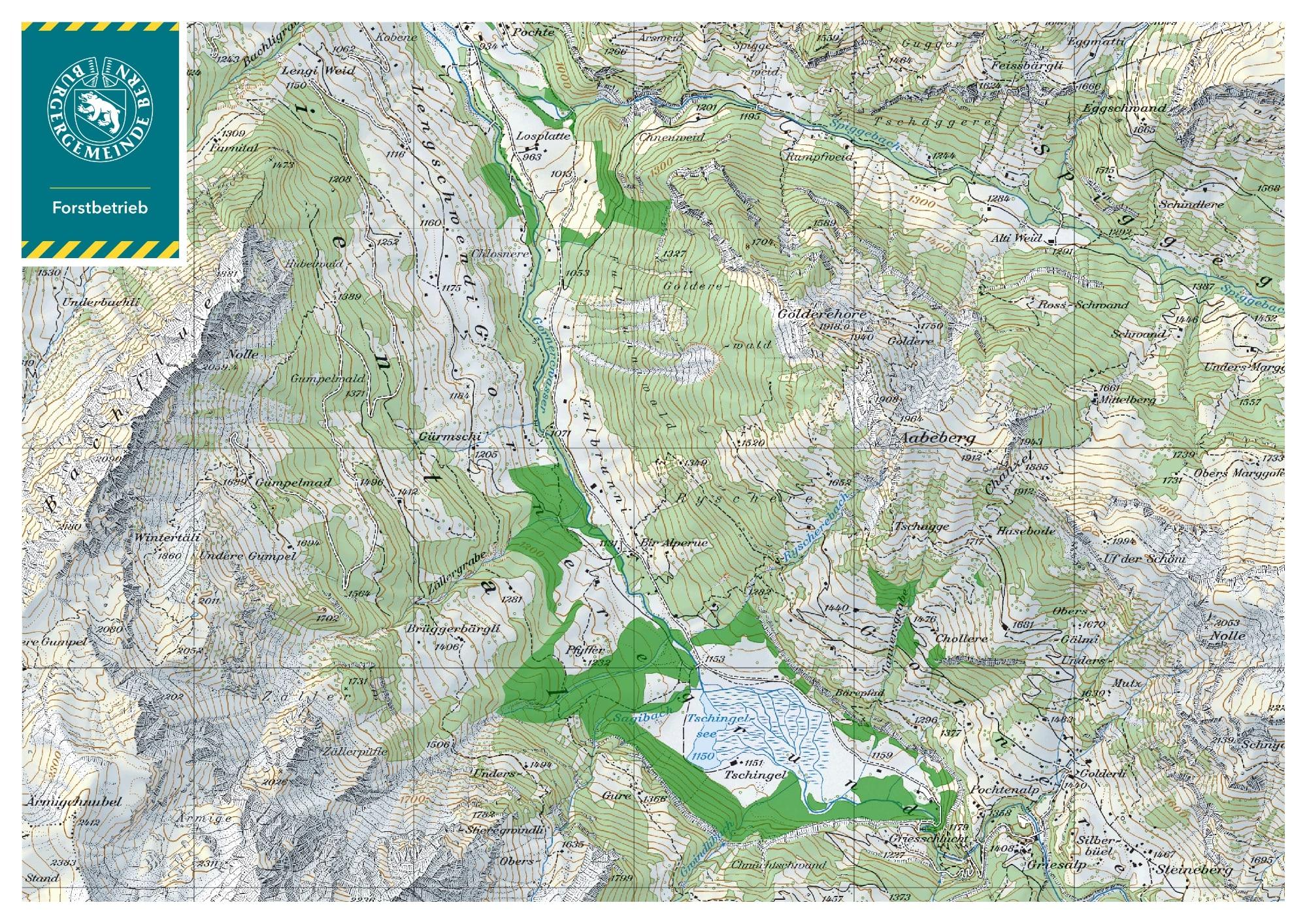 Waldgebiet der Burgergemeinde im Kiental (Datenquelle Swisstopo)