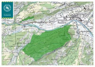 Waldgebiet der Burgergemeinde in Saanen (Datenquelle Swisstopo)