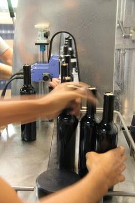 Flasche für Flasche mit abgefülltem Wein