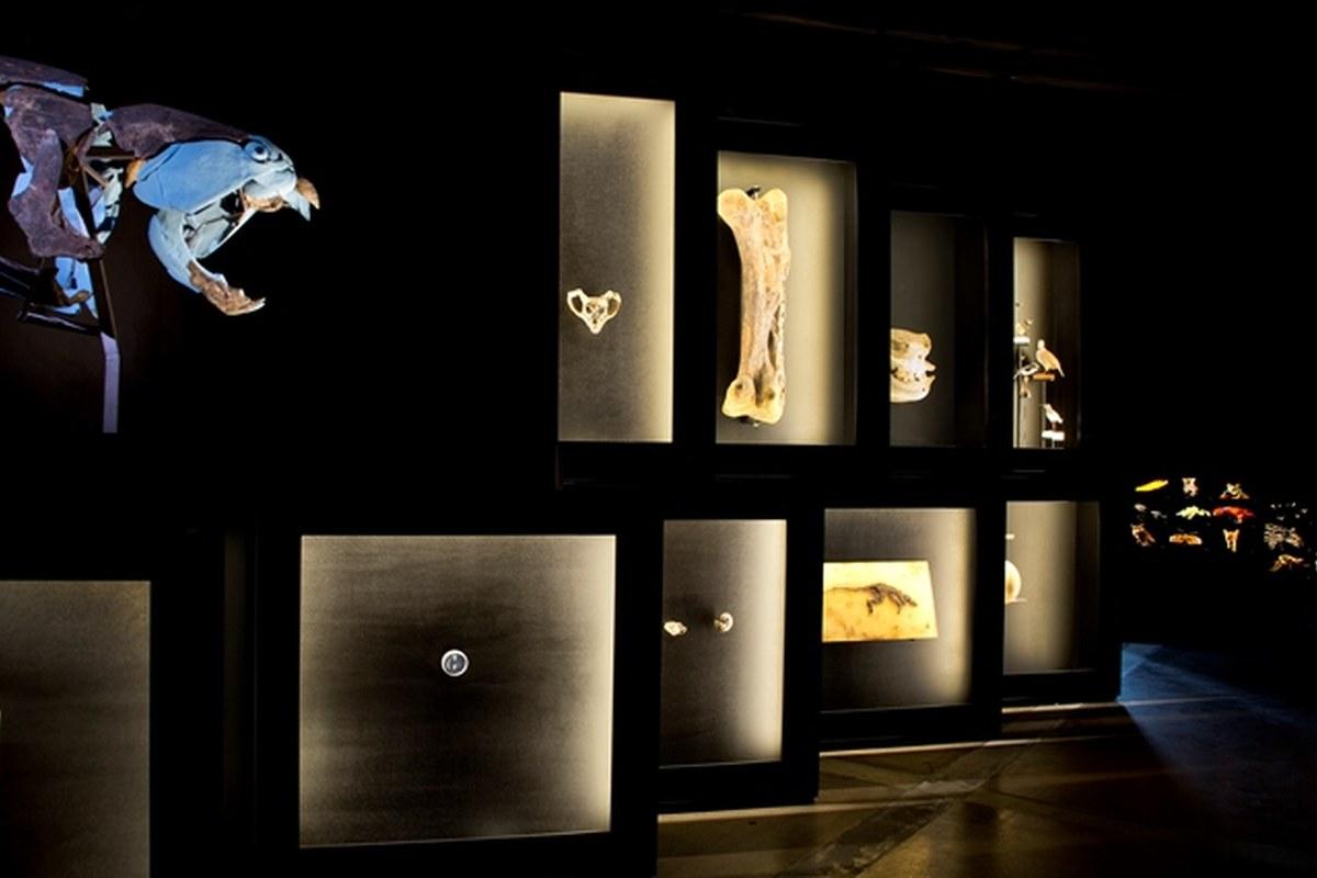 2-weltuntergangausstellung-lisaschaeublinnmbe.jpg. Vergrösserte Ansicht