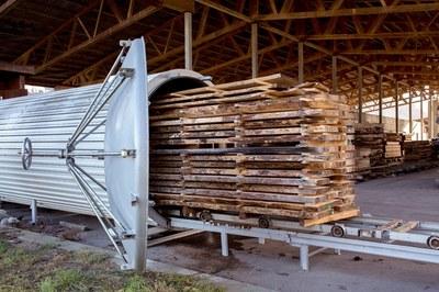 Schnelltrocknung des Holzes